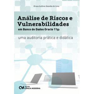 Analise-de-Riscos-e-Vulnerabilidades-em-Banco-de-Dados-Oracle-11g---Uma-auditoria-pratica-e-didatica