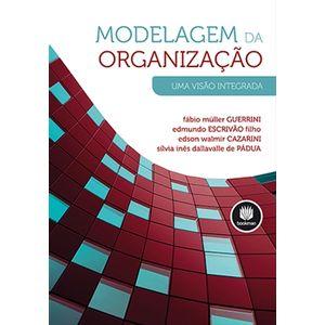 Modelagem-da-Organizacao---Uma-Visao-Integrada
