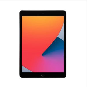 iPad-102--8ª-geracao-Wi-Fi-128GB---Cinza-espacial